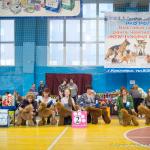 Жемчужина Сибири выставка собак